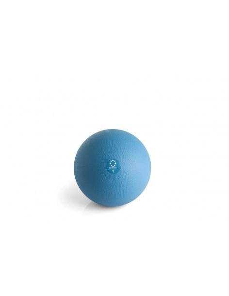 MEDICINE BALL EQUILIBRIUM