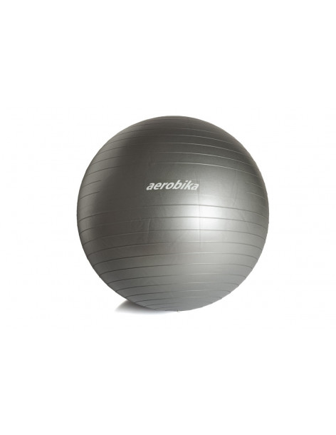 AEROBIKA GYM BALL (65 cm)